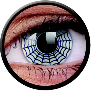 Spider (Jahreslinse) (1x2)