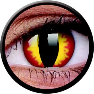 Dragon Eyes (Jahreslinse) (1x2)